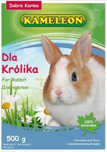 Pokarm dla królika